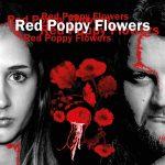 Red Poppy Flowers - Pressefoto quadratisch- mit Titel